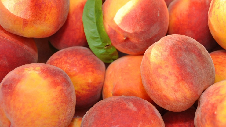 Georgia peaches...
